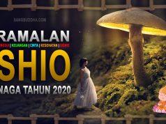 ramalan shio naga tahun 2020