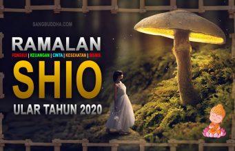 ramalan shio ular tahun 2020